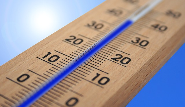 Thermometer symbolizing Items that should be stored in a climate controlled storage.